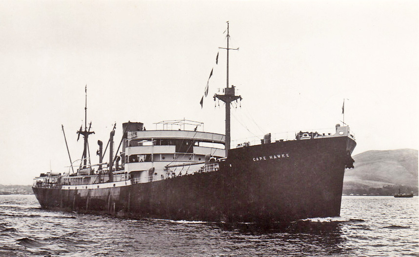 Motor vessel cape hawke built by lithgows ltd in 1941 for for Motor cargo freight company